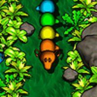 Il gioco del Serpentone in una nuova originale versione. Per passare il livello, l'invertebrato dovrà mangiare più volte serie di tre frutti della stessa tipologia (3 ciliege, 3 pere ecc.). Non permettere al vermone affamato di mordere il cursore del mouse, pena la fine del gioco.